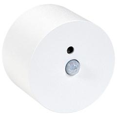 Sensor (wit) beweging en licht in witte metalen opbouwarmatuur